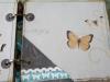 album-weselny_18